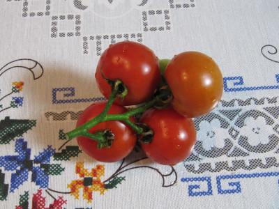 Tomato_8308